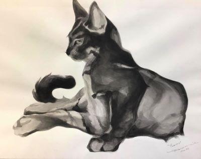 Le chat Marin - Jean-Claude Boudier